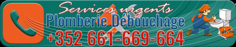 call: 352-661-669-664